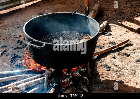 Coffee beans being roasted over a wood fire in a coffee farmer's house in the Valle de Vinales, Vinales, Cuba, Caribbean - Stock Photo