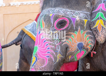 Portrait of painted elephant walking up to Amber Fort in historical city of Amer, Jaipur, Rajasthan, India. Famous travel destination in India - Stock Photo