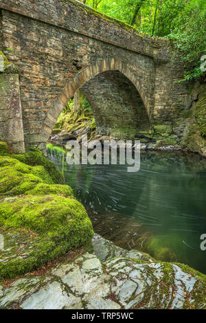 Denham Bridge over the River Tavy is popular with thrill seekers who jump into the deep pool below which is reported to be forty seven feet deep. The - Stock Photo