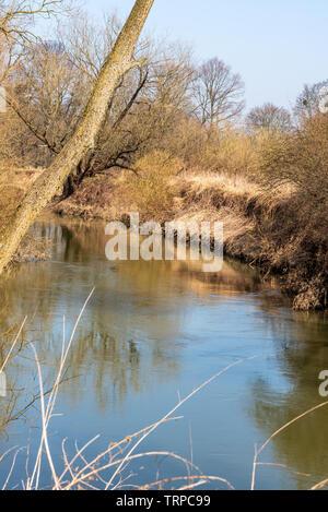 meander of Odra river on the border of PR Kotvice near Studenka city in early spring CHKO Poodri in Czech republic - Stock Photo