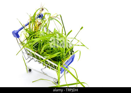 Fresh picked green grass in i small shopping cart solated on white background image
