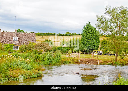 Pastoral scene at the river windrush  at Swinbrook (Oxfordshire), idyllische Szene am Flusse Windrush nahe Swinbrook - Stock Photo