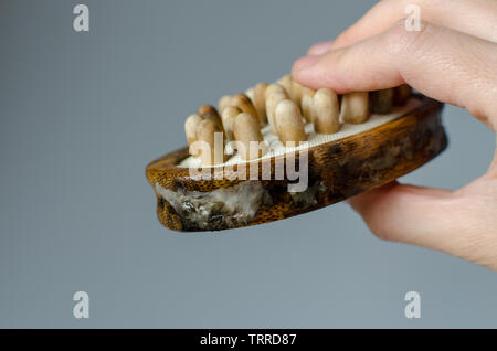 disgusting fungus on woman wooden massage brush. Close up. House cleaning concept. - Stock Photo