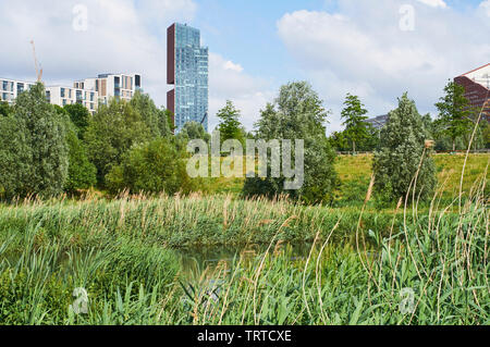Manhattan Loft Gardens apartments in Stratford, East London, UK, viewed from the banks of the River Lea in the London Olympic Park - Stock Photo