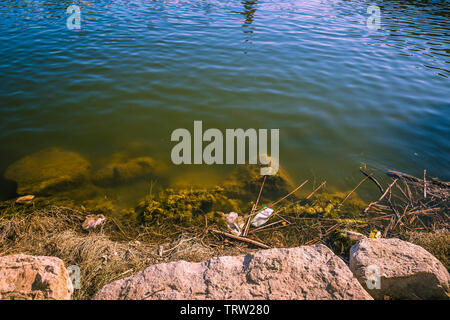 polluted water with plastic waster in the riverbank - Stock Photo