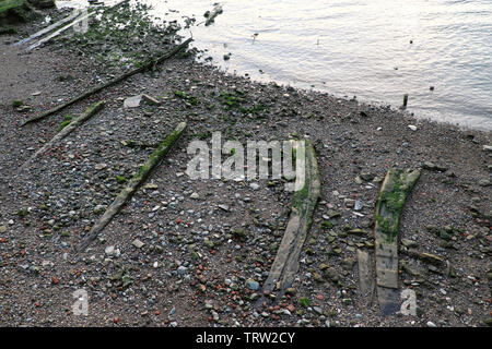 Historic ship timbers on the foreshore of the River Thames at low tide in Rotherhithe South London England UK  KATHY DEWITT - Stock Photo