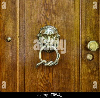Close-up of a shiny metal lion head with a wound up snake in its mouth, one lock and one door knob on a rustic brown wooden door - Stock Photo
