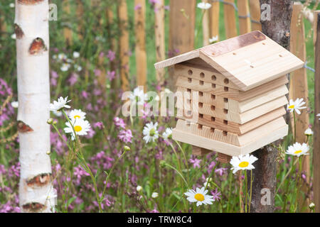 Insect box situated in a garden wildflower area for encouraging insects (wildlife) into the garden. UK - Stock Photo