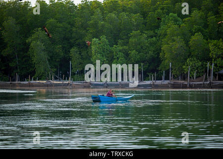trad thailand - november27,2017 : unidentified man sailing long tail boat in fresh water canal against green mangrove forest in trad province eastern - Stock Photo