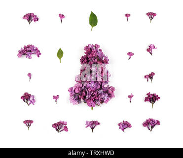 Creative layout made of purple lilac flowers and petals  on  the white  background. Floral pattern in minimal style. Flat lay,top view. - Stock Photo