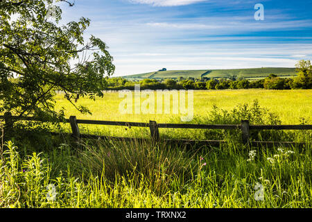 The view towards Liddington Hill near Swindon, Wiltshire on a an early summer's morning. - Stock Photo