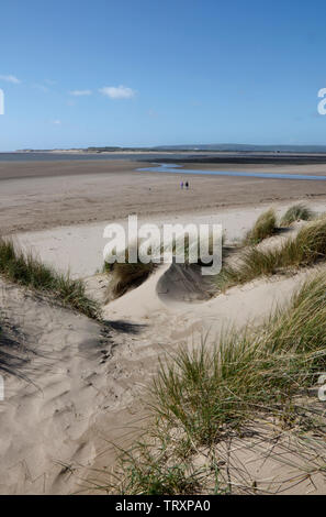Looking out from Instow Sands across River Taw to Braunton Burrows, Devon, England, UK - Stock Photo