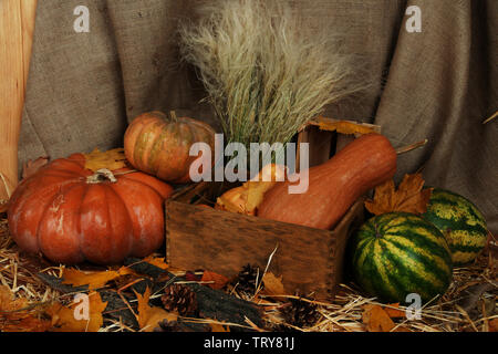 Pumpkins in crate with watermelons on straw on sackcloth background - Stock Photo