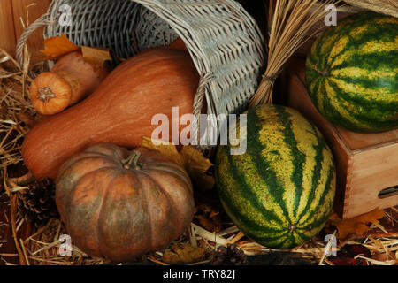 Pumpkins in basket and watermelons on crate on straw close up - Stock Photo