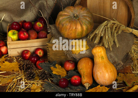 Apples in crate with pumpkins and on straw on sackcloth background - Stock Photo