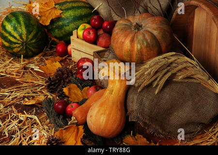 Apples in crate with pumpkins and watermelons on straw close up - Stock Photo