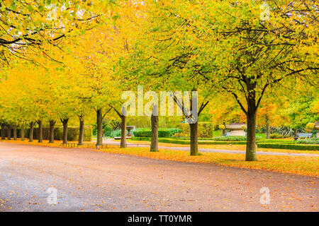 Peaceful scenery of tree lined avenue with benches in the Regent's Park of London - Stock Photo