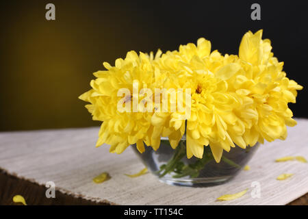 Beautiful chrysanthemum flowers in vase on table on dark yellow background - Stock Photo
