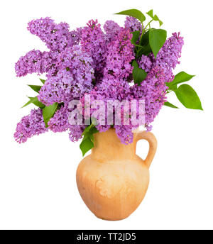 Beautiful lilac flowers in pitcher isolated on white - Stock Photo