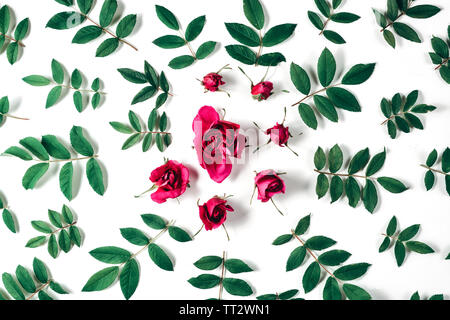 Flowers composition. Frame made of red rose flowers and green little leaves on white background. Many little leaves for decorating any post card or ce - Stock Photo