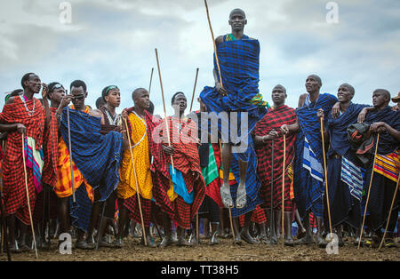 Same, Tanzania, 5th June, 2019: young  Maasai warrior in full traditional party outfit, jumping with pride - Stock Photo