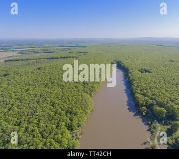 Drone photo. The aerial view of the muddy lake and the forest. - Stock Photo