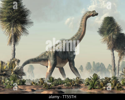 Brachiosaurus was a sauropod dinosaur, one of the largest and most popular. It lived in during the Late Jurassic Period. Standing in a wetland. - Stock Photo
