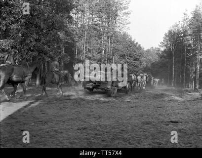Wehrmacht Heer Feldkanone K15/16(t) K410(i) 15,2 cm Ex Tscheslowakei Autokanone M.15/16 - German Army Field Cannon K15/16 15,2cm Ex Chechen Slovakia M.15/16 - Stock Photo