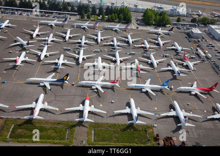 June 2019: Boeing 737 Max aircraft grounded at Boeing Field factory near Seattle, Washington, USA, during the crisis caused by unsafe software - Stock Photo