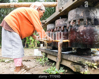 AMAZON REGION, RURRENABAQUE, BOLIVIA - MAY 15, 2016: Image of an indigenous woman chopping sugarcane to get cane juice. Beni river area in the Madidi - Stock Photo