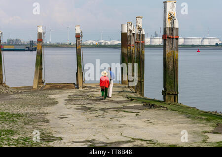 Older couple walks on the quay to the water to watch the ships sail and enjoy the Western Scheldt in Antwerp Belgium - Stock Photo