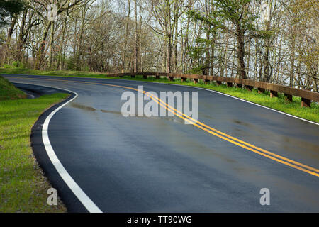 Horizontal shot of a wet curving road going through The Smoky Mountains. - Stock Photo