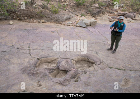 Dinosaur footprint in Torotoro National Park, Torotoro, Bolivia - Stock Photo