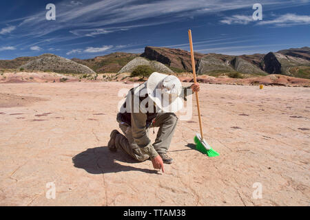 Paleontologist studying dinosaur footprints in Torotoro National Park, Torotoro, Bolivia - Stock Photo