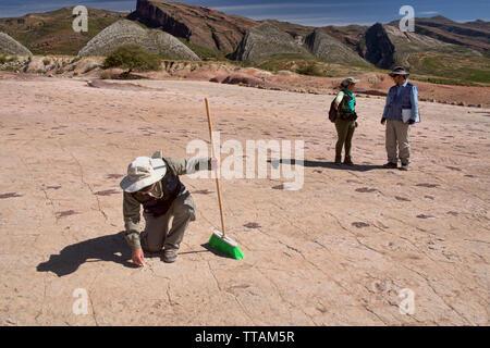 Paleontologist studying dinosaur footprints in Torotoro National Park, Torotoro, Bolivia - Stock Photo