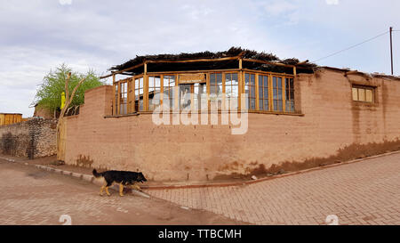 A street in San Pedro de Atacama with the typical adobe houses, Chile. Adobe is a building material made from earth and organic materials. - Stock Photo