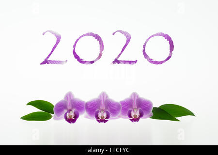 2020 number with purple orchids isolated on white background - Stock Photo