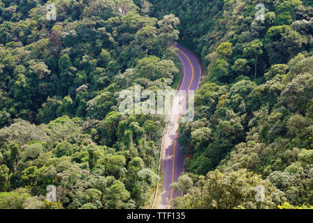 Street between trees in the forest aerial view from above, Jaragua Peak, Brazil - Stock Photo