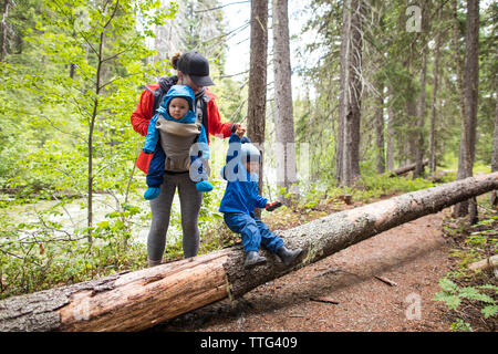 Mother hikes through the forest with her two childern. - Stock Photo