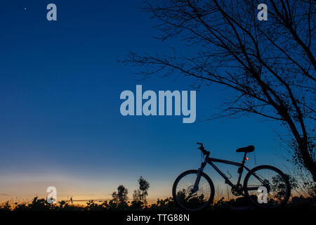 Silhouette of Mountain bike at sunset under tree on blue sky - Stock Photo