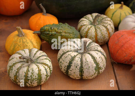 High angle view of colorful pumpkins on wooden table in backyard - Stock Photo