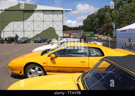 Lotus owners display, Double Twelve Motorsport Festival 2019, Brooklands Museum, Weybridge, Surrey, England, Great Britain, UK, Europe - Stock Photo