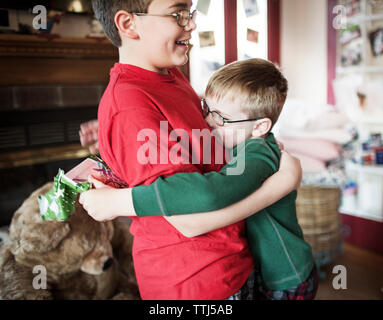 Side view of brothers embracing at home - Stock Photo