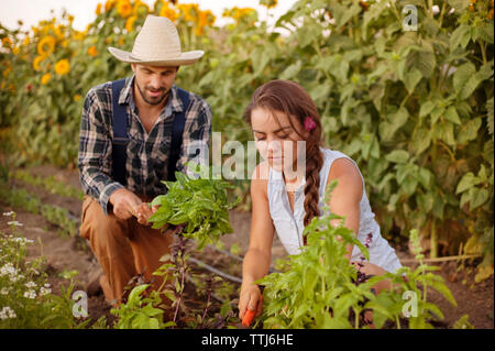 Couple planting in farm - Stock Photo