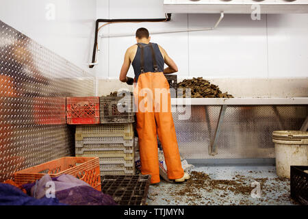 Rear view of man working in fishing industry