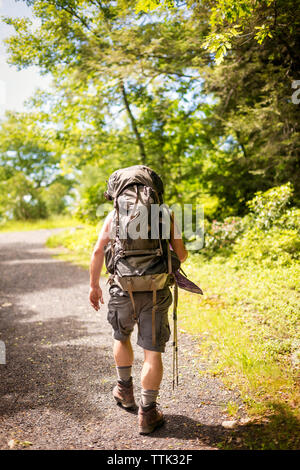 Rear view of man walking on gravel road in forest - Stock Photo