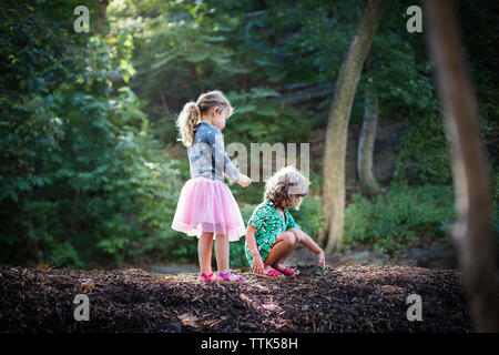 Children exploring sand in forest - Stock Photo