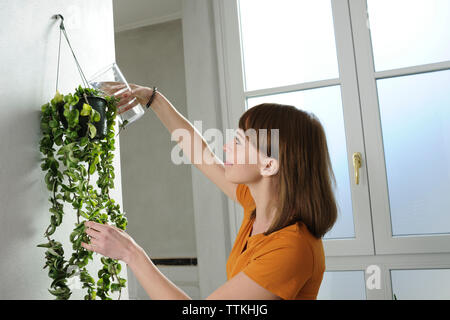 Young woman watering houseplant hanging on wall at home - Stock Photo