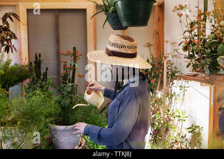 Young woman watering potted plants at greenhouse - Stock Photo