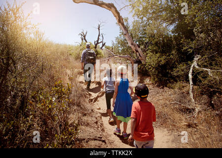 Rear view of family hiking on pathway amidst trees in forest - Stock Photo